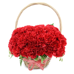 RED PERFECTION BASKET